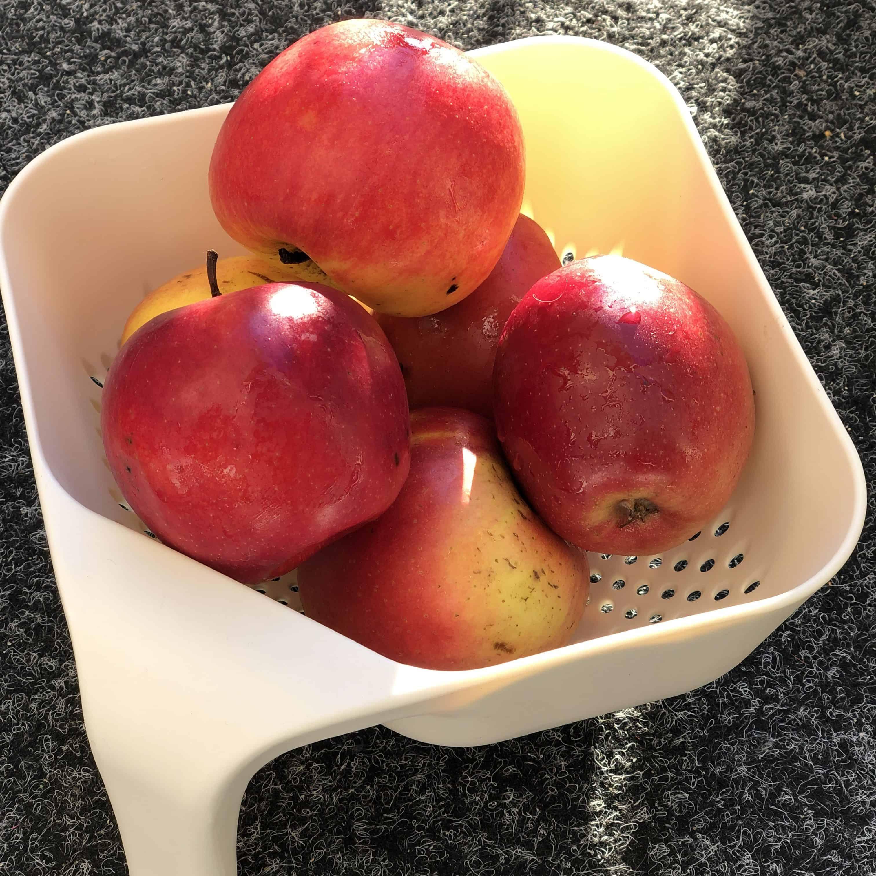 Jablka na szarlotke
