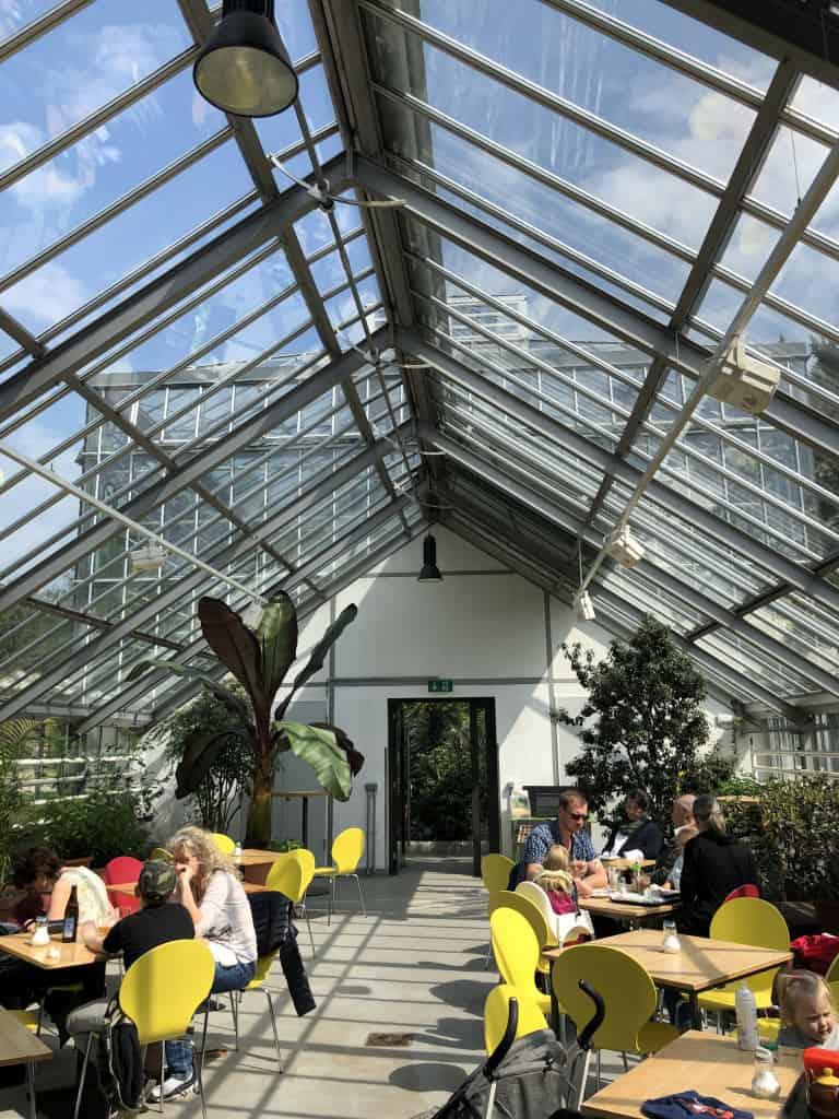 Cafe mint im Gewächshaus Botanischer Garten Berlin Pankow